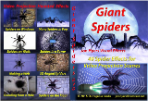 Giant Spiders Projection DVD