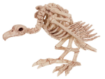 Vulture Skeleton Prop - Shipping Included