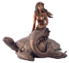 Mermaid on Sea Turtle
